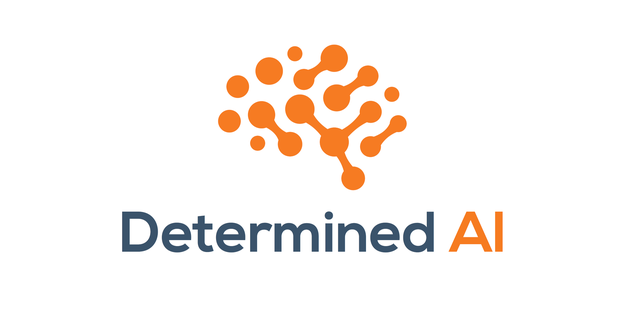 Determined.ai